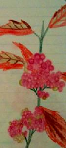 The flower I drew for this poem